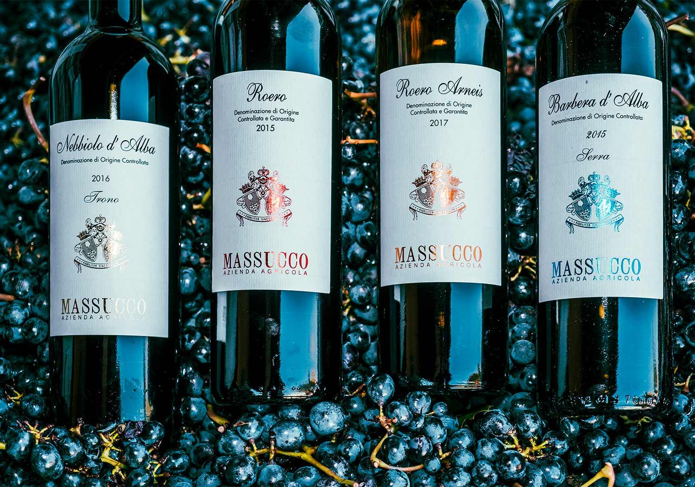 azienda vinicola massucco piemonte